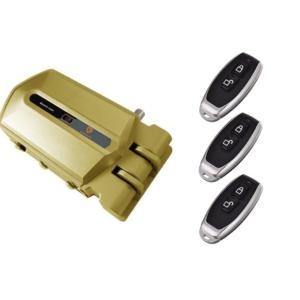 cerradura invisible dorada con alarma 95db 3 mandos